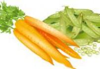 זרעי גזר שלוס - Carrot Seeds