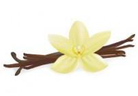 וניל שלוס - Vanilla