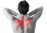 שמן לגב ולצוואר - Back & Neck