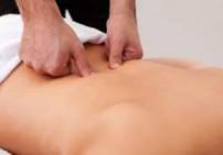 שמן עיסוי שלוס - Body Therapy