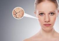 שמן לעור פנים יבש שלוס  -  S.G.R.Y. HD