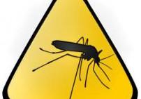 דוחה יתושים שלוס - Mosquito Free