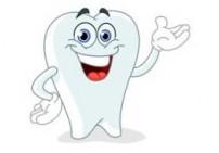 סינרגטיקה לשיניים שלוס - ציפורן וג'וניפר