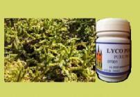 ליקו טלק טבעי שלוס - Lyco Powder